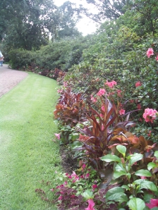 Bellingrath Gardens: beginning of the garden path