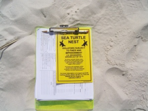 Turtle nest posting sign
