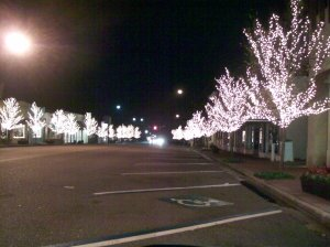 Fairhope at night in the winter