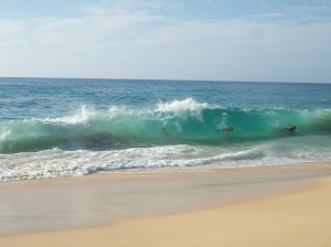 Sandy Beach HI, my favorite spot for sea glass and the best spot for body surfing if you know what you're doing.