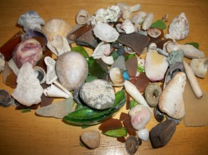 My Hawaiian Beachcombing Finds