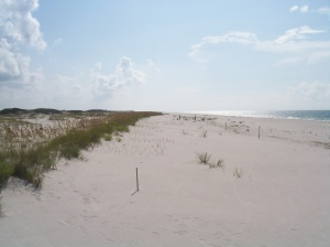 Gulf Shores west end (c) eileensaunders