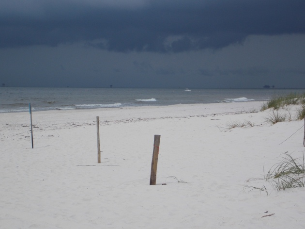 ft morgan storm 17 (c) eileensaunders
