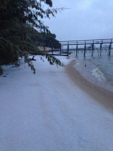 Snow on Mobile Bay beach, Daphne AL. (c) Maria Conger used with permission